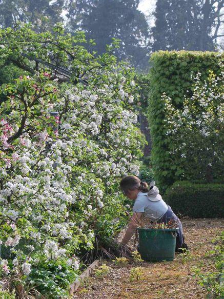 Women's Farm & Garden Association